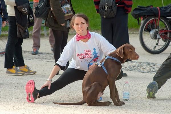dog running school royal