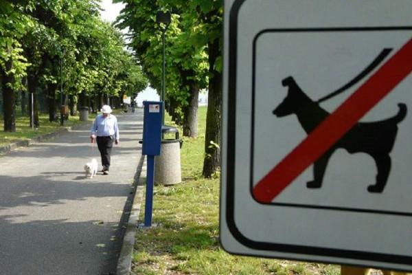 divieto cani parco