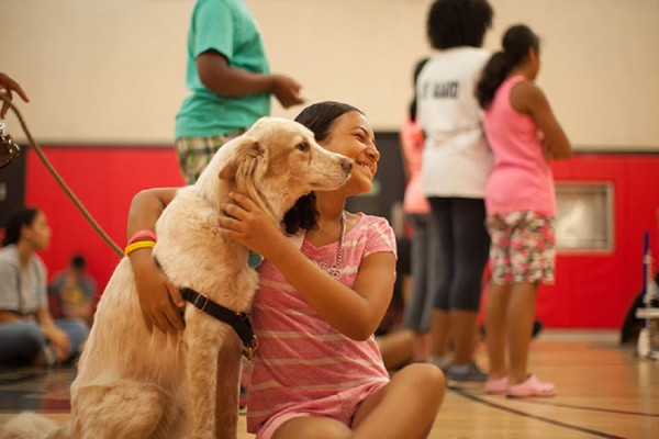 pet therapy bullismo