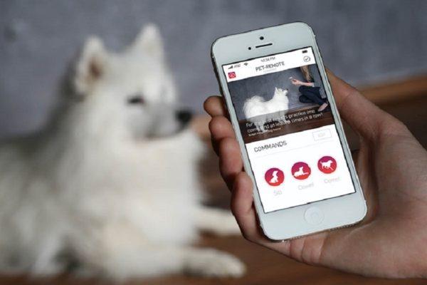 app cani2