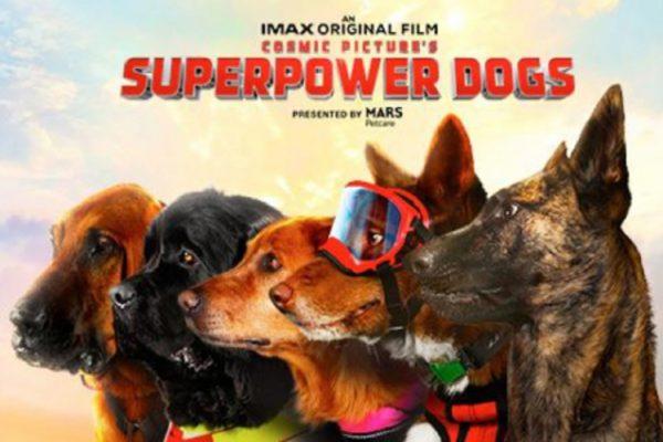 super poer dogs