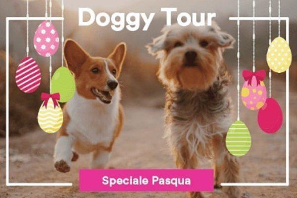 doggy-tour-assisi-1