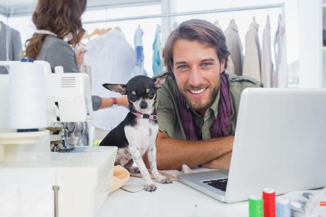regole cani al lavoro