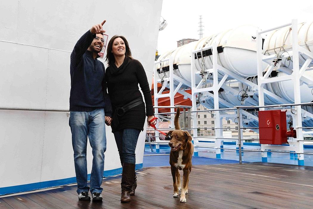 cani grandi navi veloci