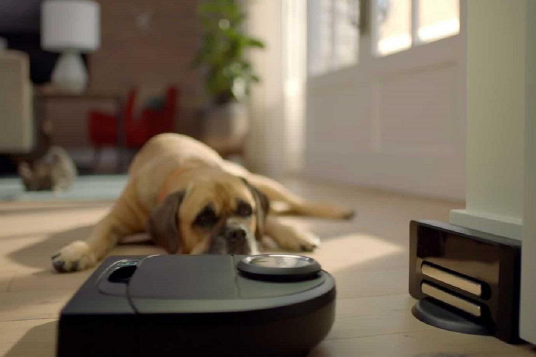 robot aspirapolvere cani